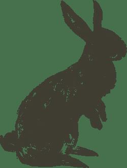 Hopping Shadow Bunny