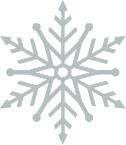 Burst Snowflake