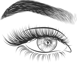 Eye & Arched Brow
