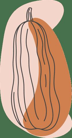 Autumn Delicata Squash