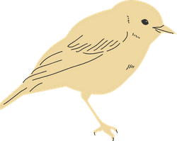Perched Canary