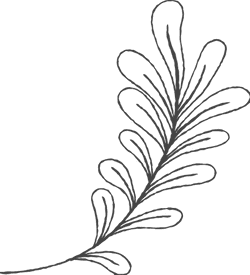 Chalky Frond