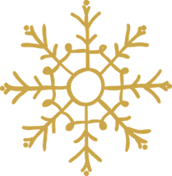 Branched Snowflake