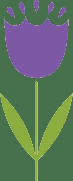 Graphic Violet