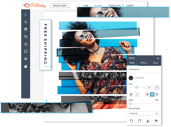 Graphic Design Tools And Templates Picmonkey