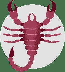 Scorpio Scorpion