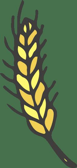 Malt Straw