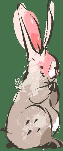 Listening Bunny