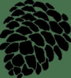 Round Pine Cone