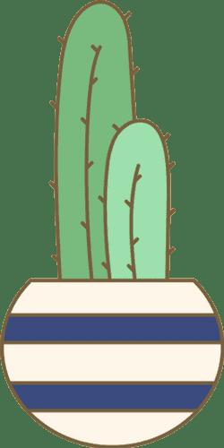 Potted Columnar Cactus