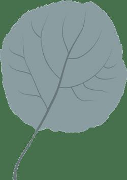 Plain Hazel Leaf