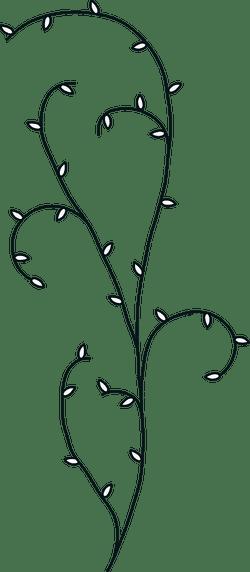 Illustrated Vine