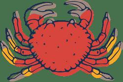 Fresh Crab