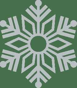 Sunshine Snowflake