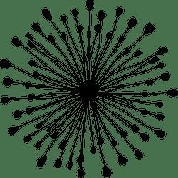 Dandelion Burst