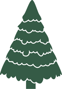 Trimmed X-Mas Tree
