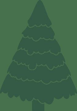 Trimmed X-Mas Tree